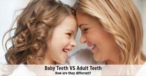 Difference between baby and adult teeth